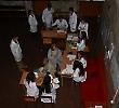 Співробітники та студенти БДМУ розповідали чернівчанам про артеріальну гіпертонію