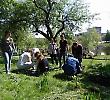 Студенти БДМУ провели екологічну акцію
