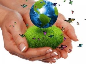 Екологія природи. Екологічне виховання